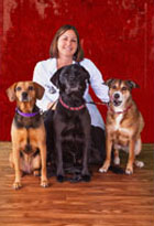 Dr. Julie Mears, DVM Doctor of Veterinary Medicine at Shiloh Veterinary Clinic in Shiloh Illinois